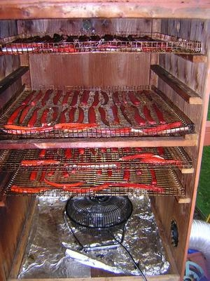 681101382_3A12C9491A57D30E8BAC543007A974DE homemade smoker ideas??  at edmiracle.co